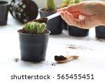 coffee ground  coffee residue... | Shutterstock . vector #565455451