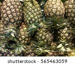 pineapple | Shutterstock . vector #565463059