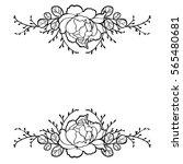 hand drawn peony rose flower... | Shutterstock .eps vector #565480681