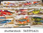 stamp collecting. philatelic.... | Shutterstock . vector #565591621