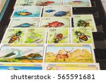 stamp collecting. philatelic.... | Shutterstock . vector #565591681