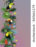 toucans in the tropical forest... | Shutterstock .eps vector #565661179