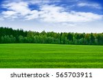 Landscape With The Bright Green ...
