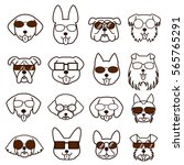 dogs faces with glasses set | Shutterstock .eps vector #565765291