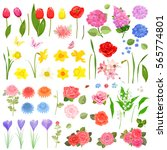 elegance collection of... | Shutterstock .eps vector #565774801
