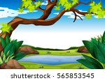 nature scene with tree and pond ... | Shutterstock .eps vector #565853545