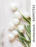 White Tulips On Wood Background