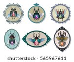 vector gemstone bugs set jewel... | Shutterstock .eps vector #565967611