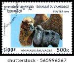 stavropol  russia   january 27  ... | Shutterstock . vector #565996267