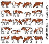 cow collection   vector outline ... | Shutterstock .eps vector #566016397