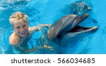 happy child and dolphins in...   Shutterstock . vector #566034685