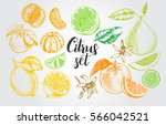 ink hand drawn set of different ... | Shutterstock .eps vector #566042521