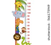 Zoo Animal Height Measure  ...