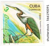 Small photo of CUBA - CIRCA 1989: A stamp printed in the Cuba, shows the exotic bird agami heron (Agamia agami) known as the chestnut-bellied heron, circa 1989