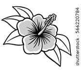 hibiscus illustration   Shutterstock .eps vector #566220784
