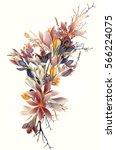 beautiful crocus flowers for... | Shutterstock .eps vector #566224075