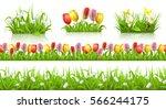 spring seamless pattern  grass... | Shutterstock .eps vector #566244175