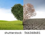 tree heart death in half... | Shutterstock . vector #566368681
