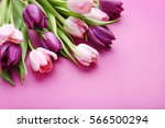 bouquet of tulips on a pink... | Shutterstock . vector #566500294