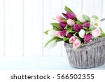 bouquet of tulips on a wall... | Shutterstock . vector #566502355