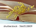 spring background with old book ... | Shutterstock . vector #566513809