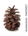 the pinecone isolated on white... | Shutterstock . vector #56652817