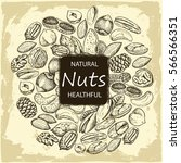 set of sketches of nuts | Shutterstock .eps vector #566566351