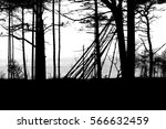forest | Shutterstock . vector #566632459