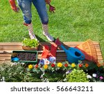 woman with gardening tools... | Shutterstock . vector #566643211