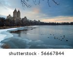 Central Park In Winter  New...