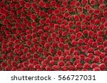 Stock photo red roses background 566727031
