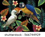 Vector painting with tropical birds and plants on dark background. EPS8 file.   Shutterstock vector #566744929