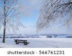 Winter Landscape  Frosty Trees...