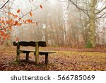 bench in woodland on a foggy... | Shutterstock . vector #566785069