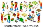 isometric barley farmer people... | Shutterstock .eps vector #566798455