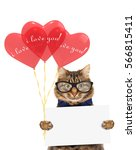 funny cat with presents and red ... | Shutterstock . vector #566815411