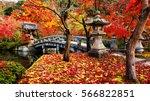 eikando or eikan do zenrinji... | Shutterstock . vector #566822851