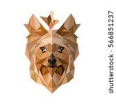 yorkshire terrie.yorkshire... | Shutterstock .eps vector #566851237