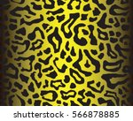 Leopard Pattern  Vector ...