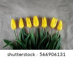 Yellow Tulips On Kraft Paper