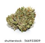 close up photo of a cannabis... | Shutterstock . vector #566933809