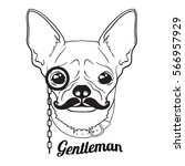 vector face of little dog in... | Shutterstock .eps vector #566957929