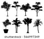 various trees silhouette...