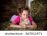 Loving Kittens  A Cute Little...