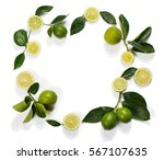 Frame Made Of Lime Fruits With...