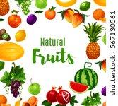 vitamin food or fruit poster.... | Shutterstock .eps vector #567130561