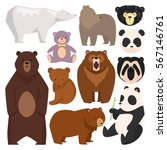 Different Style Wild Bears...