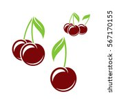 cherry. isolated berries on... | Shutterstock .eps vector #567170155