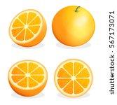 orange fruit. vector... | Shutterstock .eps vector #567173071