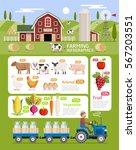farming infographic elements... | Shutterstock .eps vector #567203551